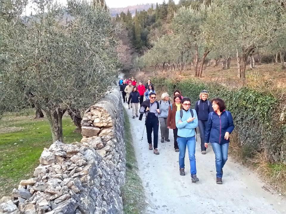 L'arte Della Ginnastica Camminata Ecologica
