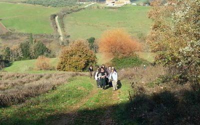 106° Camminata L'arte della ginnastica .19/20 Ottobre 2019 (Francigena Buonconvento/San Quirico D'Orcia